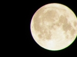 """February Full Moon"""